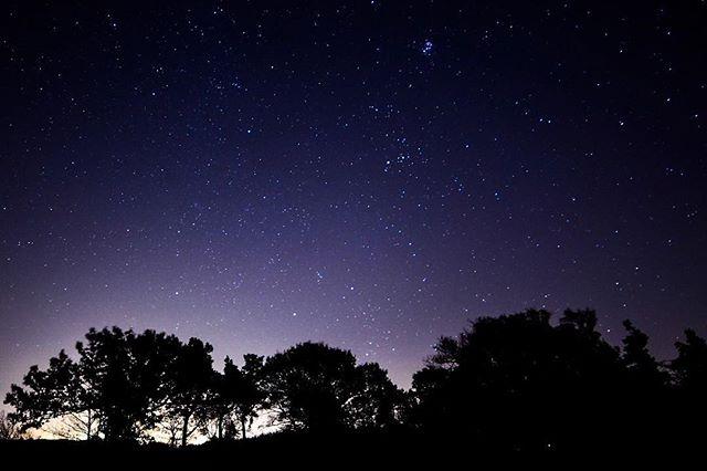 Blawhorn Moss Starry night