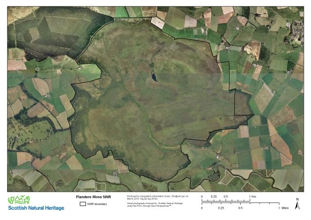 aerial photo of Flanders
