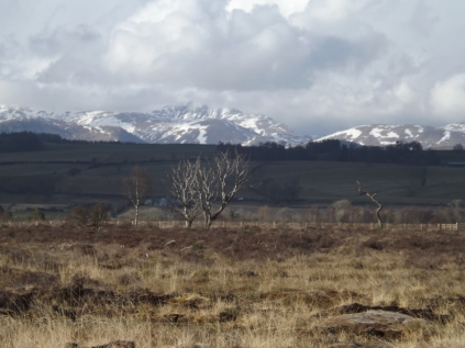 Looking to Stuc a Chroin and Ben Vorlich
