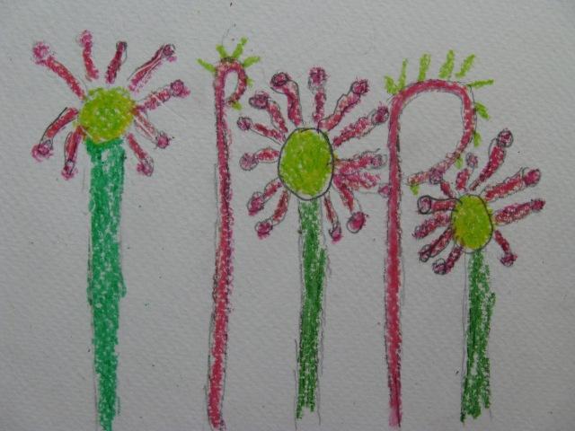 Flanders Moss NNR - under the microscope - artwork for leaflet - Sundews May 18 (A2636396)